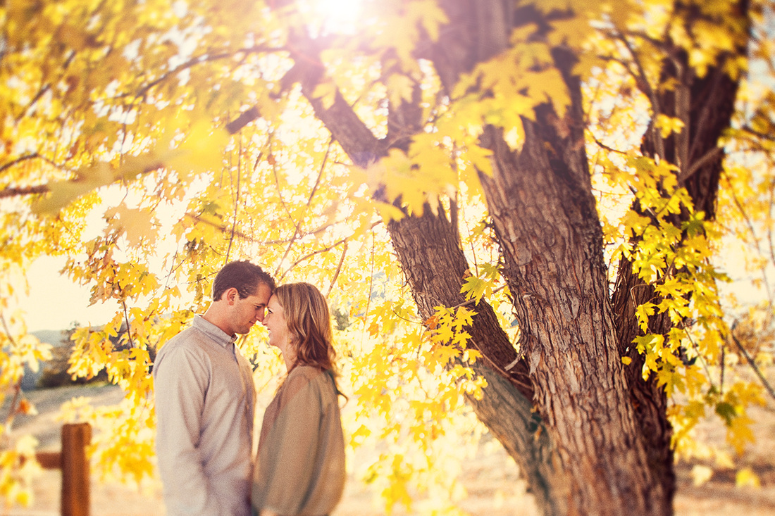 Oak Glen Engagement Shoot